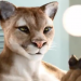 "Orangina Gay ""Cat"" Banned French Ad"